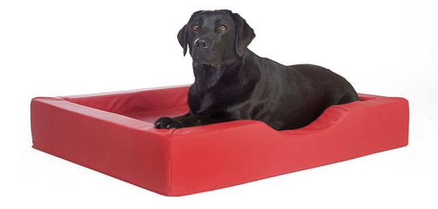 Doggebed Compact Stule