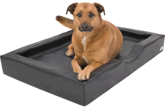 DoggyBed Visco Compact Style